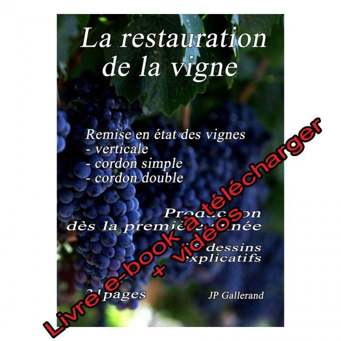 Formation La Taille De La Vigne Verticale Avec 1 E Book Et 5 Videos Bonus Latailledesarbresfruitiers Fr Taille Vigne Vigne E Book