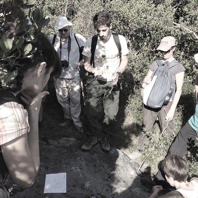 #Stelle di #pietra, le #incisioni #rupestri di #Monte #Cotrozzi con G. Panigada e R. Simonetti