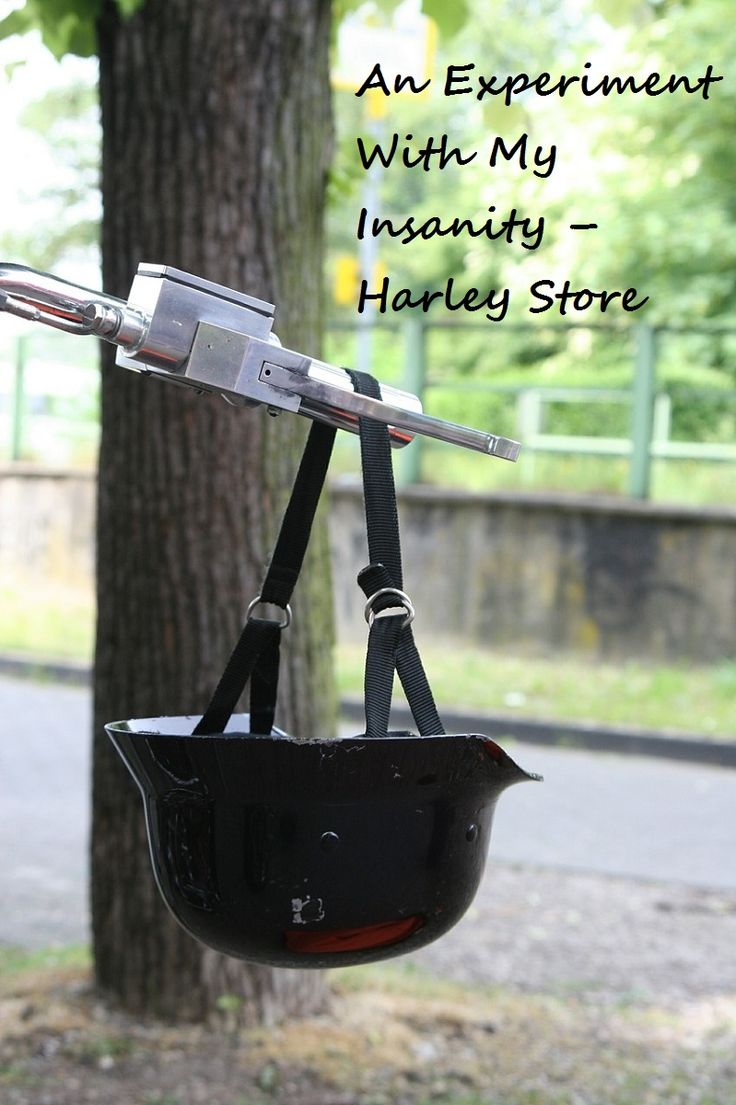 An Experiment With My Insanity – Harley Store