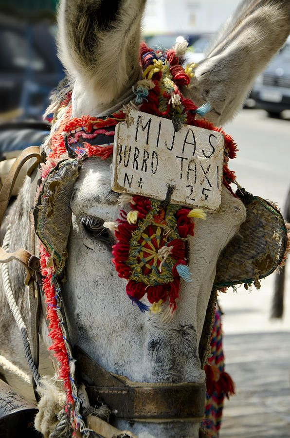 Traditional Greek taxi.