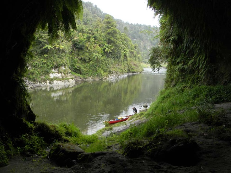 Image result for Maori Culture, Whanganui River and New Zealand: What is Happening?