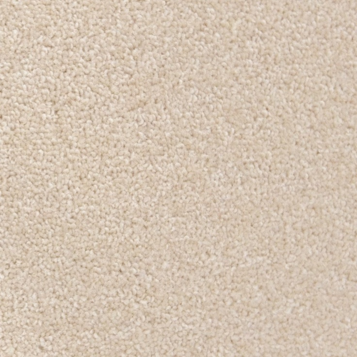 Cream carpet