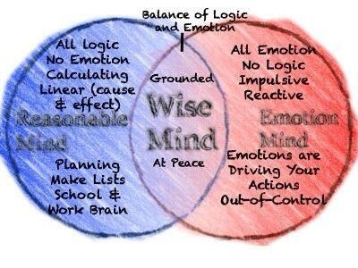 Worksheets Wise Mind Worksheet 1000 images about dbt therapy on pinterest the wisdom strength wise mind is foundation for all other skills recognizing states of and knowing how to achieve mind