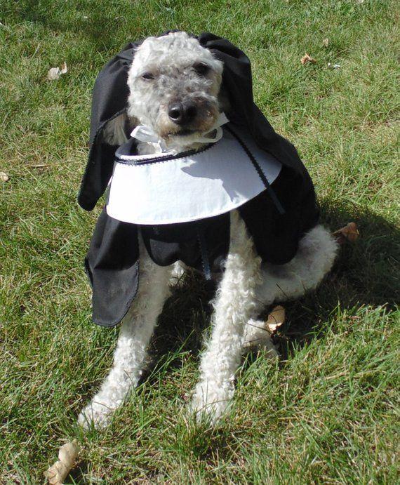 Nun Dog Costume Dog Costume Dogs Costumes