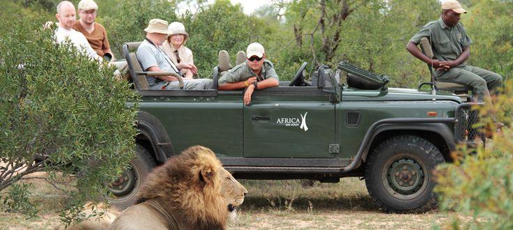 #gamedrive #safari #krugerholiday #africaonfoot #bigfive
