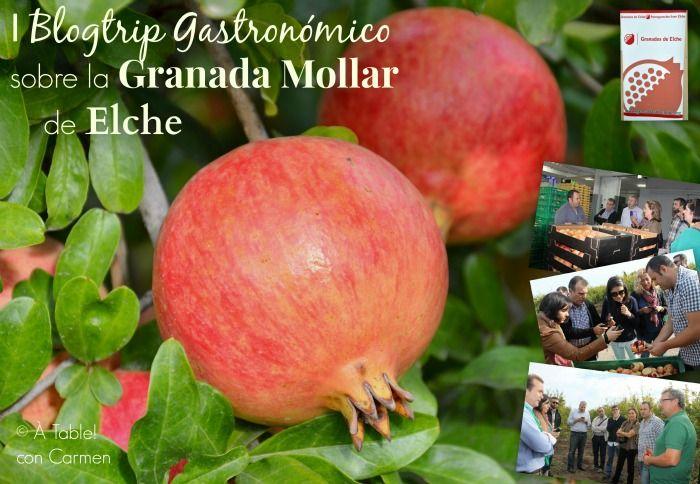 I Blogtrip gastronómico sobre la Granada Mollar de Elche
