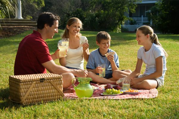 Go for #picnic this winter with your family and spend time with them.
