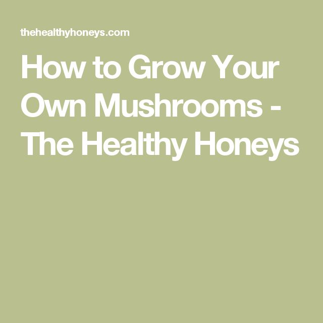 How to Grow Your Own Mushrooms - The Healthy Honeys