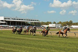 Tampa Bay Aims to Continue Its Roll in 2017  https://www.racingvalue.com/tampa-bay-aims-to-continue-its-roll-in-2017/