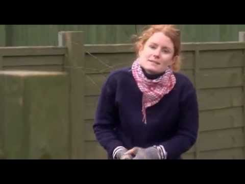 Alys Fowler starting a Forest Garden ~ from BBC Gardener's World