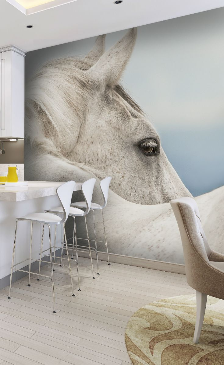 Dreamer Wall Mural. Horse WallpaperWallpaper ...
