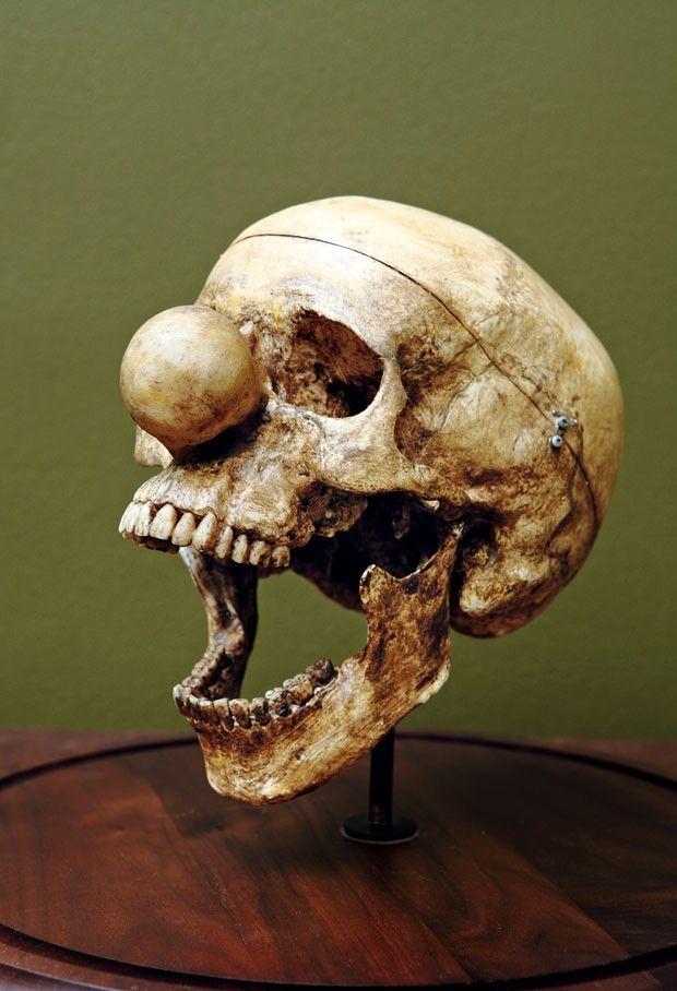 Caveira de palhaço (Yorick 1515-1575), Obras em Série, 1989 / 2010, plástico moldável e tinta, de Vik Muniz