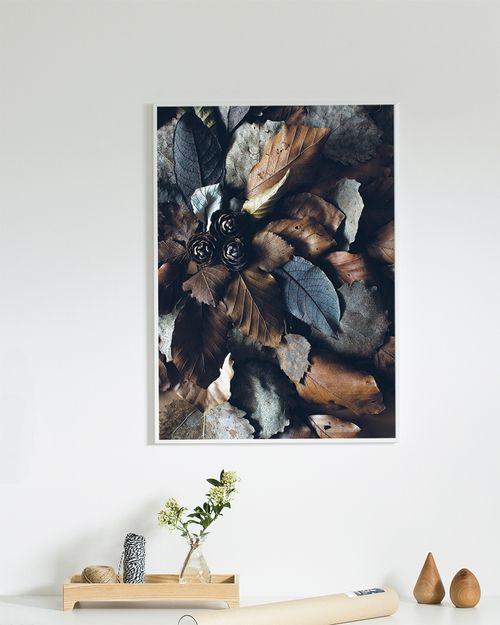 Løvfall Plakat (50 x 70 cm)