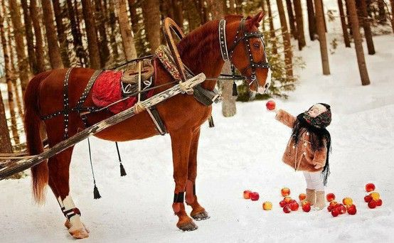 Little girl feeding apples to a horse. Somewhere in Bucovina, Romania (Via Discover Bucovina Facebook Page)