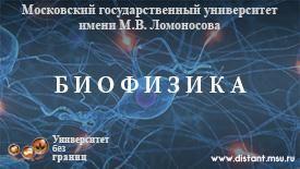 Открытое образование - МГУ имени М.В.Ломоносова