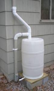ohanalives: Rain barrel