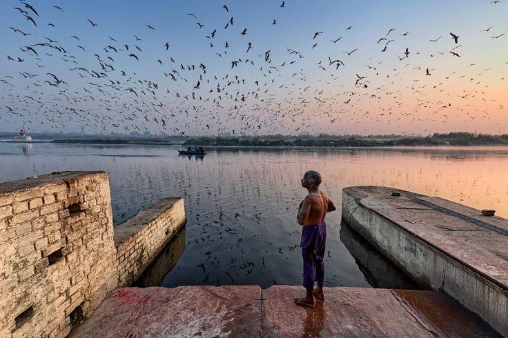 Photo du jour | National Geographic