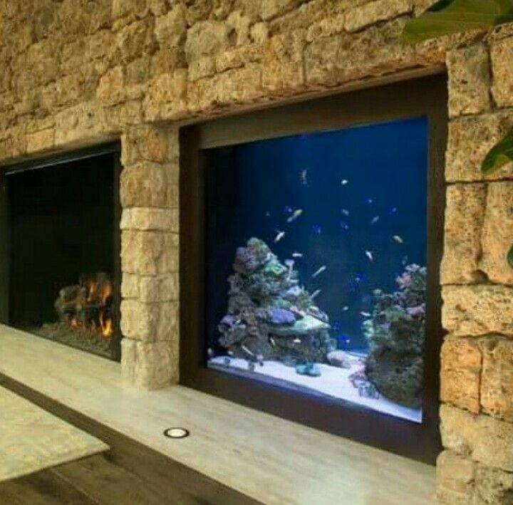 400 gallon custom acrylic aquarium in walll and fireplace adjacent sits on the floor great for the kids in pacific palisades ca