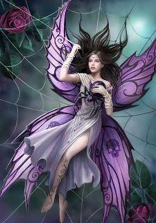 Fairys Pet spider -- Love!