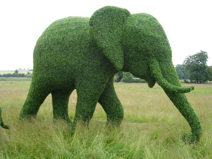 How To Make Topiary Animals Part - 20: You Can Make What Out Of Foliage? Part 2 Amazing Green Animals