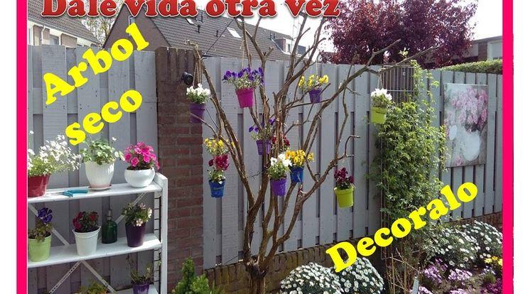 M s de 25 ideas incre bles sobre arbol seco en pinterest - Arbolitos para jardin ...
