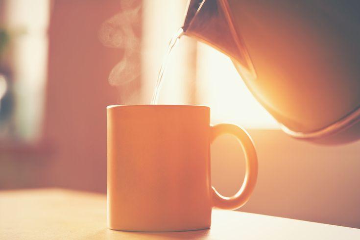 Een heetwaterkuur is prima voor het ontgiften van de lever. Een heetwaterkuur is verreweg de goedkoopste leverondersteuning die er bestaat.