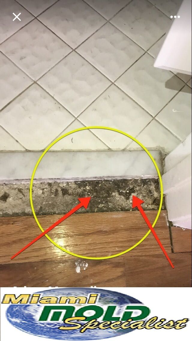 If you're looking for a professional, experience company to provide asbestos removal or mold remediation, call the experts at Miami Mold Specialist in Miami, FL at 305-763-8070 to schedule your consultation.