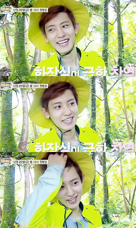 Chanyeol in the laws of the jungle
