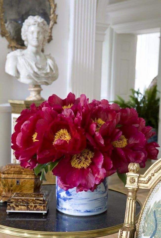 500 besten >>> All my flowers <<< Bilder auf Pinterest   Blumen ...