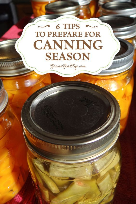 This time of the year finds the kitchen counters piled high with tomatoes waiting to be turned in to tomato sauce and salsa, the refrigerator's crisper draws are crammed with string beans and carrots ready to be pressure canned, and cucumbers waiting to be turned into pickles. Yup, it is officially canning season. It can be overwhelming at times but here are some strategies to prepare for canning season.