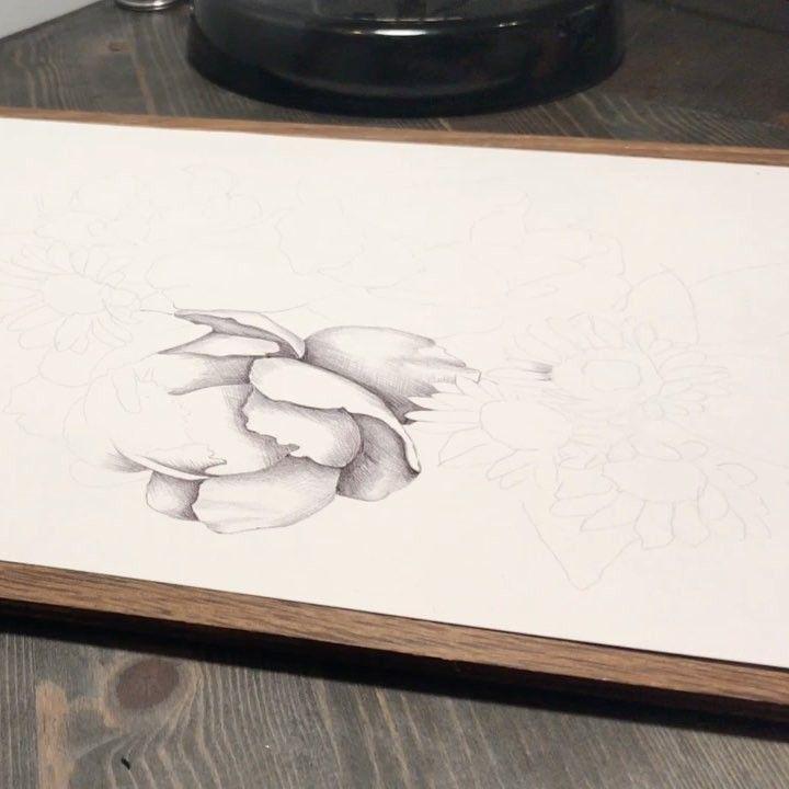 Video: drawing in progress #flloralillustration #illustration #ballpointpen