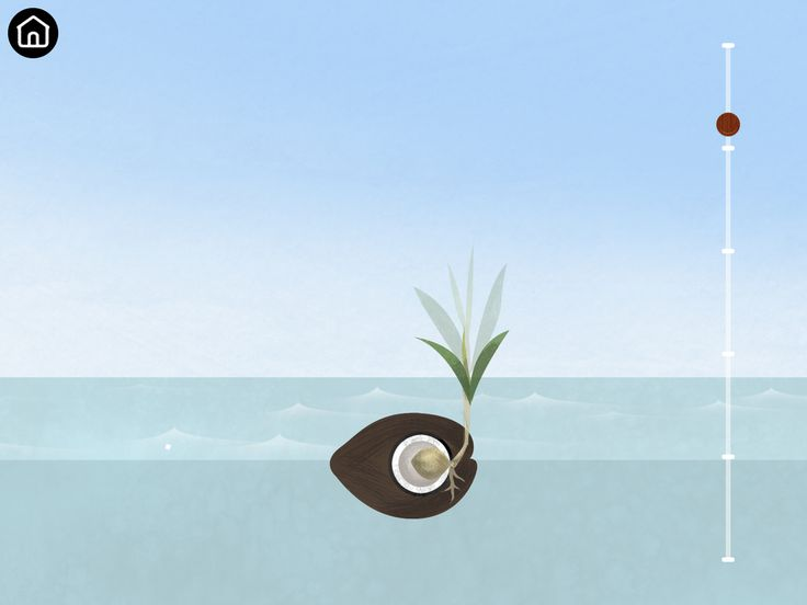 The scene illustrate how coconut changes while travelling in the sea.