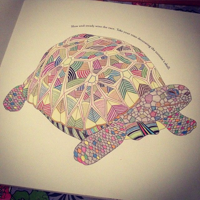 The Beautiful Rainbow Turtle Was Tonights Addition Colour Colouringbook
