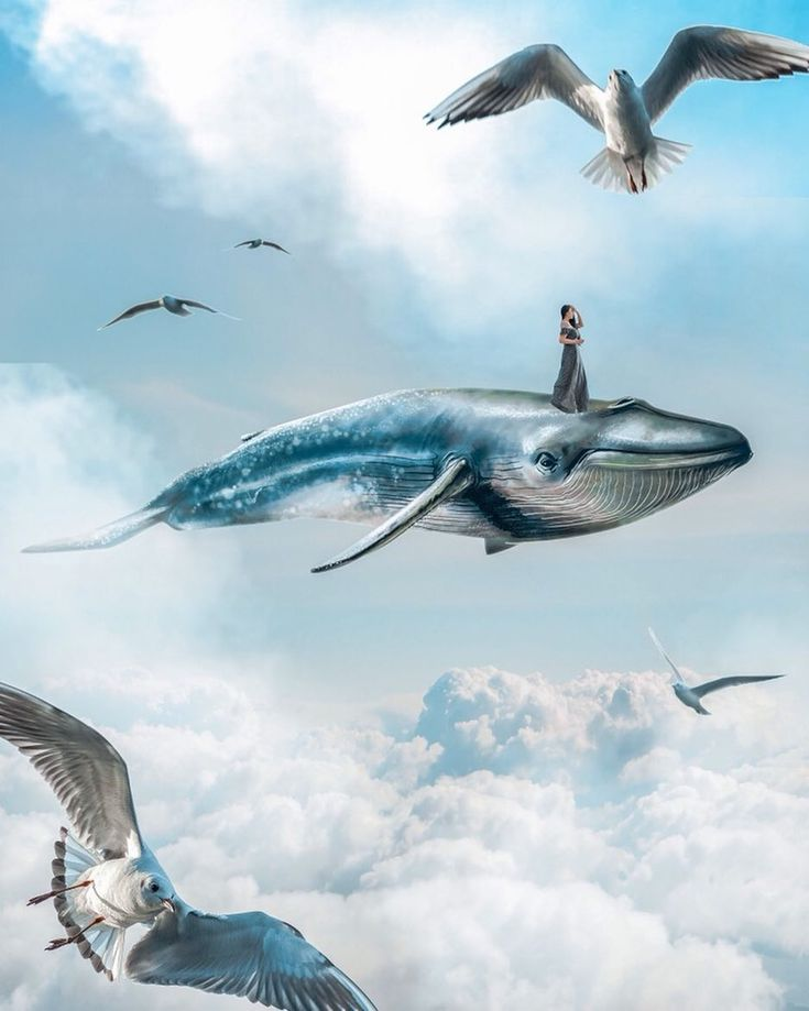 photoshop ideas, photo manipulation, astral projection, astral travel, astral travel dreams, dreamy aesthetic, whale art, whale in the sky