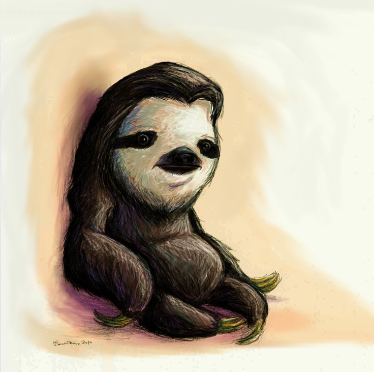 Sloth... If I were to be any animal this is it