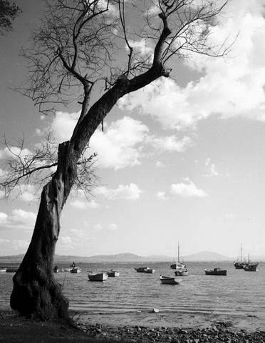 Βάρκες στη Μιτζέλα,1966..φωτ.Τάκης Τλούπας