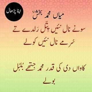 'Hazrat Mian Muhammad Bakhsh(Saif ul Malook)