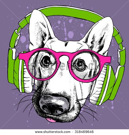 The image portrait of the dog in the glasses and ...