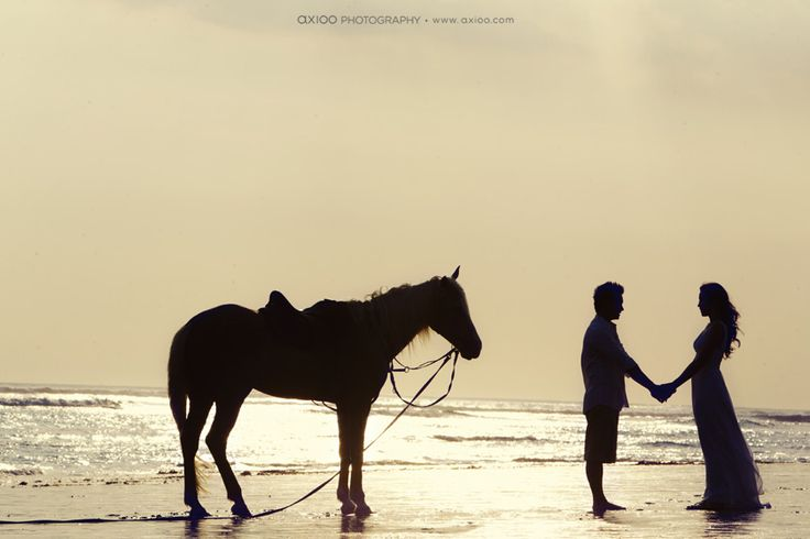 Romance and cowboys.