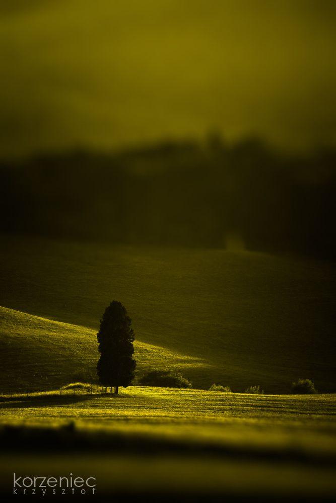 Toskania - Tuscany Krajobraz - Landscape fot. www.korzeniec.pl