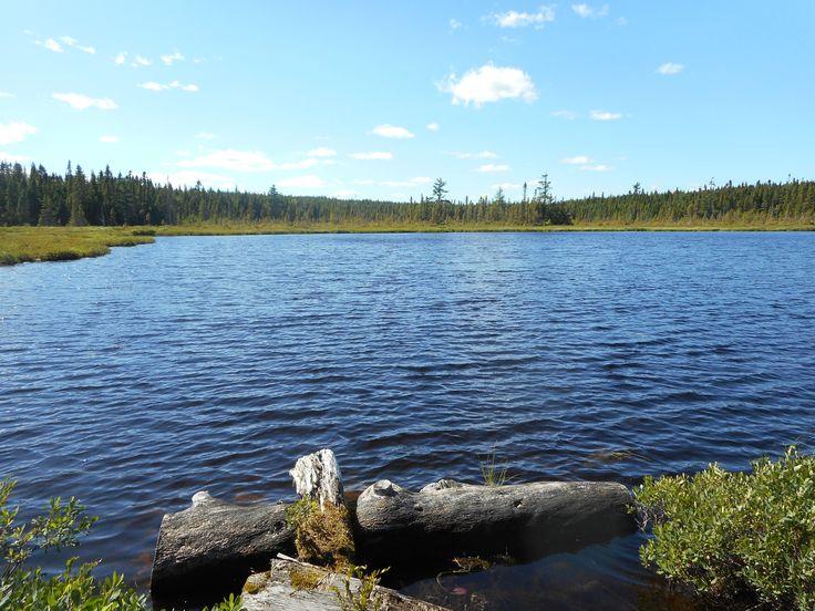 Joanne Lake Northern NB