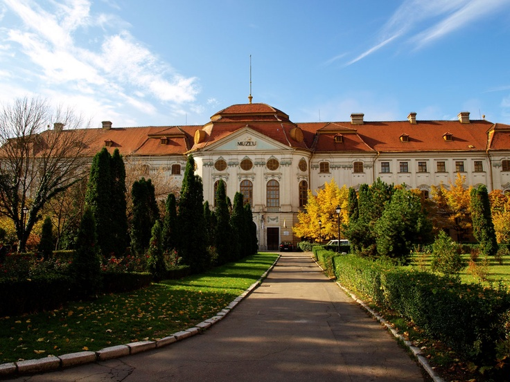 Museum in Oradea... was once a palace. Beautiful place to explore.