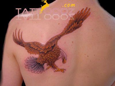 http://tattoo-ideas.us #Eagle Tattoo  Tribal Eagle Tattoo Designs Pictures Ideas,Eagle Tattoo  Tribal Eagle Tattoo Designs Pictures Ideas designs,Eagle Tattoo  Tribal Eagle Tattoo Designs Pictures Ideas ideas,Eagle Tattoo  Tribal Eagle Tattoo Designs Pictures Ideas tattooing,Eagle Tattoo  Tribal Eagle Tattoo Designs Pictures Ideas piercing,  more for visit:http://tattoooz.com/eagle-tattoo-tribal-eagle-tattoo-designs-pictures-ideas/
