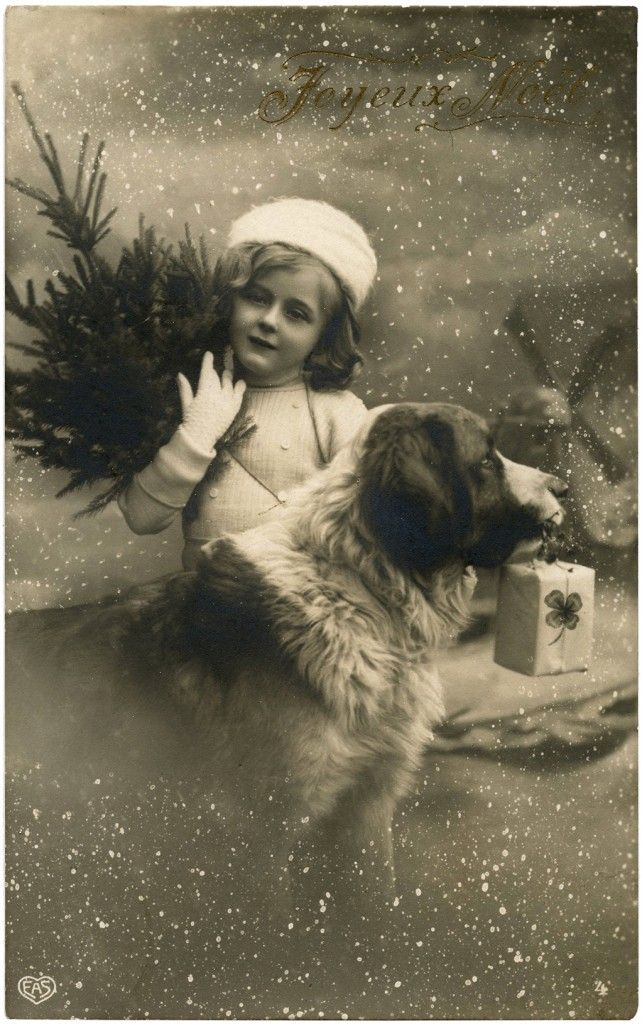 Vintage Christmas Girl with Dog Photo! | This is a scan of an Old Vintage Postcard. The card shows a darling little girl holding a Christmas alongside her Dog. So cute! I love the snowy background and the French Greeting!