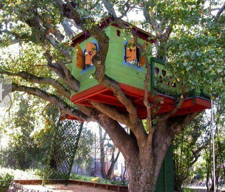 Les plus belles cabanes dans les arbres