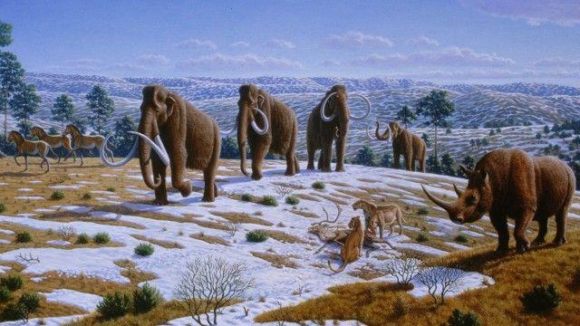 De-Extinction Debate: Should Extinct Species Be Revived?