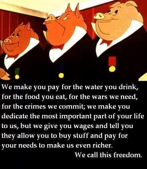 CROOKED POLITICIANS + RICH PIGS AT THE TROUGH!!!
