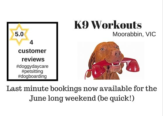 @K9Workouts #Moorabbin #VIC Last minute bookings June lng weekend #doggydaycare #dogboarding http://petstayadvisor.com.au/business/k9-workouts