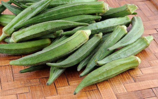 Benefits Of Vegetables Okra For Typical Health Indonesia