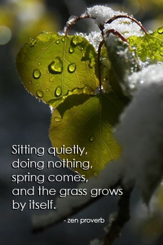 sitting quietly